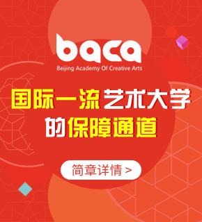 BACA国际艺术教育中心图片