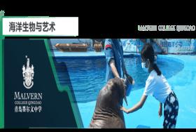 青岛墨尔文中学:夏天,把一切都变成海!图片