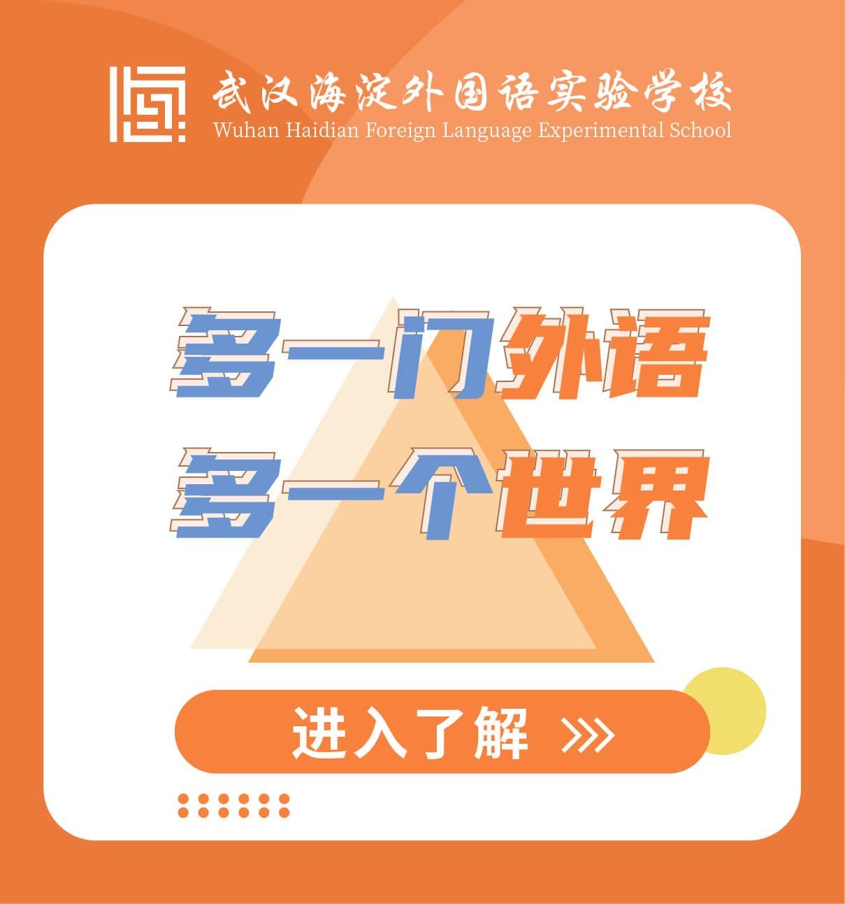 武汉海淀外国语实验学校图片