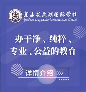 宜昌龙盘湖国际学校图片